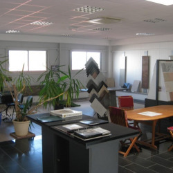 Location Local d'activités Tallende 636 m²
