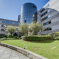 Location Bureau Levallois-Perret 391 m²