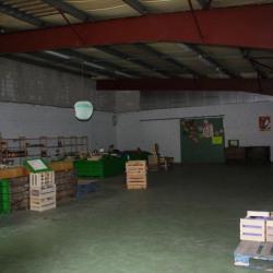 Location Local d'activités Montluçon 511 m²