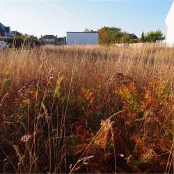 Vente Terrain Riantec 955 m²