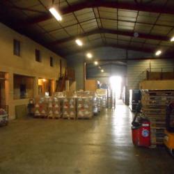 Location Local d'activités Saint-Alban 700 m²