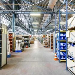 Vente Local d'activités Villeurbanne 7152 m²