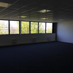 Location Local d'activités Lisses 570 m²
