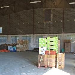 Location Entrepôt Cheval-Blanc 300 m²