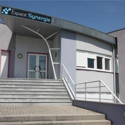 Location Local d'activités Soufflenheim 450 m²