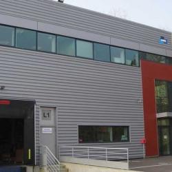 Location Local d'activités Villebon-sur-Yvette 5072 m²