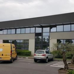 Location Entrepôt Montévrain 227 m²