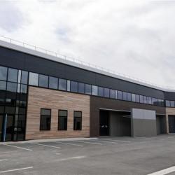 Location Local d'activités Sucy-en-Brie 1527 m²
