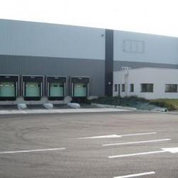 Location Entrepôt Dambach-la-Ville 20502 m²