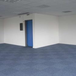 Location Bureau Labège 80 m²