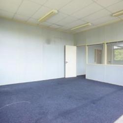 Location Bureau Lognes 65 m²