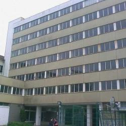 Location Bureau Ivry-sur-Seine 1520 m²
