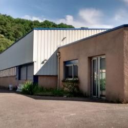 Vente Local d'activités Fleurieu-sur-Saône 680 m²
