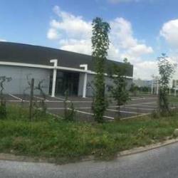 Location Local d'activités Sainte-Geneviève-des-Bois (91700)