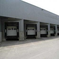 Vente Entrepôt Gambsheim 2709 m²