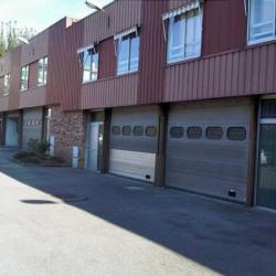 Location Entrepôt L'Haÿ-les-Roses 190 m²