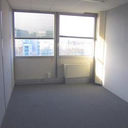 Vente Bureau Toulouse 247 m²