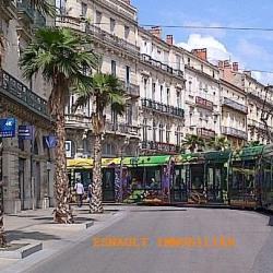 Cession de bail Local commercial Montpellier 100 m²