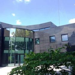 Vente Local d'activités Grigny 434 m²