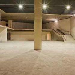 Vente Local d'activités Saint-Cloud 1800 m²