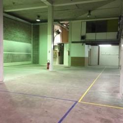 Location Local d'activités Colombes 510 m²