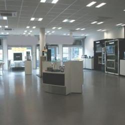 Location Bureau Lyon 9ème 300 m²