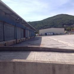 Location Local d'activités Cuers 1800 m²