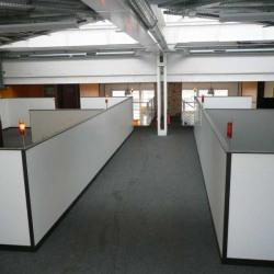 Vente Bureau La Plaine Saint Denis 949 m²