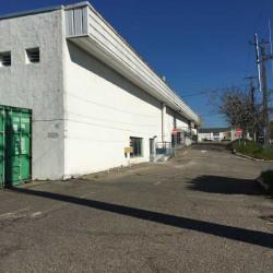Location Local d'activités Artigues-près-Bordeaux 400 m²
