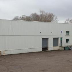Location Local d'activités Ludres 1422 m²