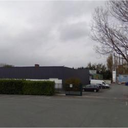 Location Local d'activités / Entrepôt Lys-lez-Lannoy