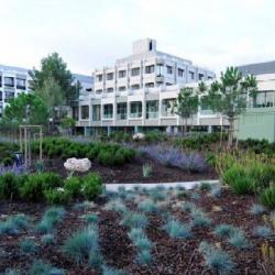 Location Local d'activités Montpellier 150 m²
