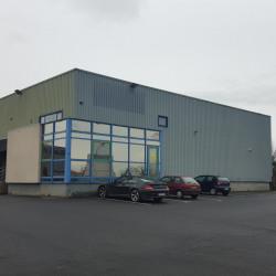 Location Local d'activités Bréal-sous-Montfort 1000 m²