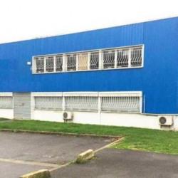Vente Local d'activités Aulnay-sous-Bois 1000 m²
