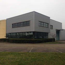 Vente Entrepôt Haguenau 494 m²