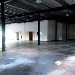 Location Local d'activités Ferrières-en-Brie 587 m²