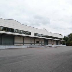 Location Local d'activités Courcouronnes (91080)