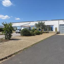 Location Local d'activités Vendargues 6498 m²