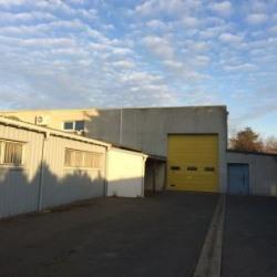 Location Local d'activités Fondettes 1500 m²