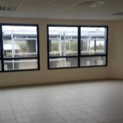 Location Local d'activités Ennery 357 m²