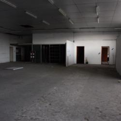 Vente Local d'activités L'Union 2355 m²