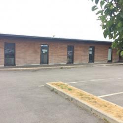 Location Bureau Ploërmel 100 m²