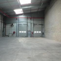 Location Local d'activités Bonneuil-sur-Marne 3444 m²