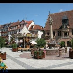 Vente Local commercial Molsheim 0 m²