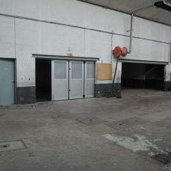 Location Local d'activités Issy-les-Moulineaux 539 m²