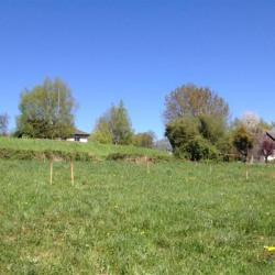 Terrain  de 778 m²  Vert-Toulon  (51130)