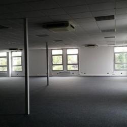 Location Bureau Le Plessis-Robinson 551 m²