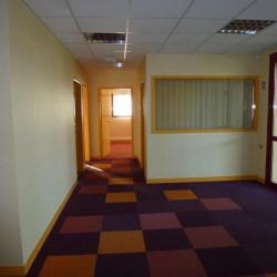 Location Local d'activités Pluguffan 450 m²