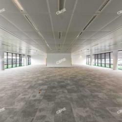 Location Bureau La Plaine Saint Denis 3055 m²
