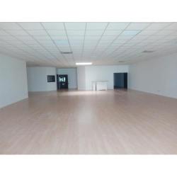 Location Local commercial Saint-Bonnet-de-Mure 370 m²